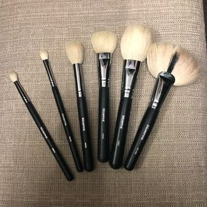 Morphe bundle of brushes